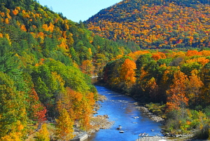 West River in the fall, Townshend, VT